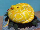 Carved Python Cake Custom Cake Design at Sweet Themes Bakery Kent Washington