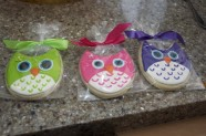 These owl-themed cookies are fun in bright colors.