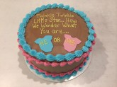 Gender Reveal Cake Custom cake design Sweet Themes Bakery Kent Washington